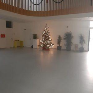 Christbaum Volksschule Gänserndorf Süd